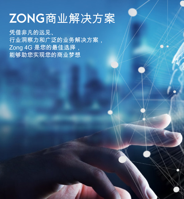 zong 4g for business